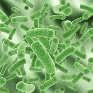 Microbiología Temas Selectos (Materiales Dentales)